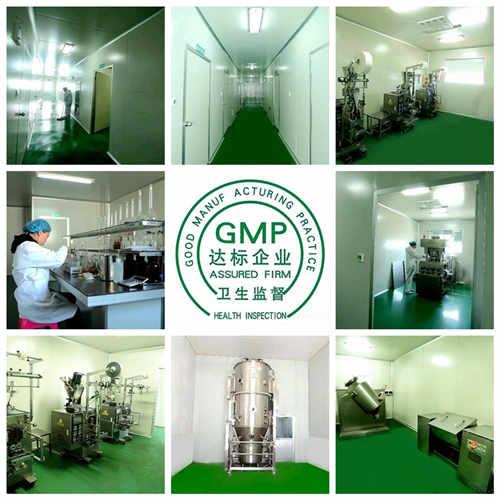 袋泡茶生产加工厂