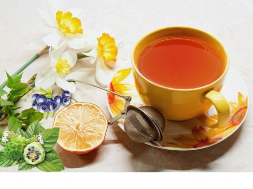 植物固体饮料保健食品代加工德州健之源