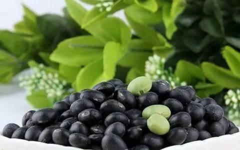 黑豆茸固体饮料代加工德州健之源