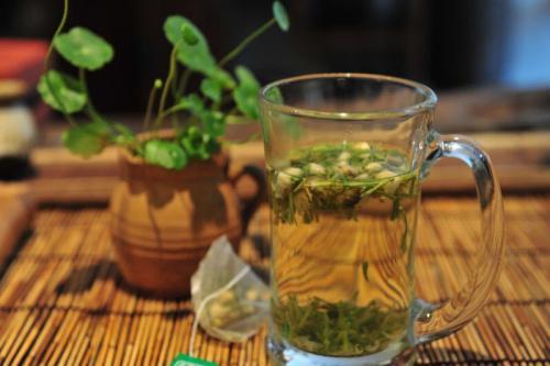 金银花茶的功效德州健之源