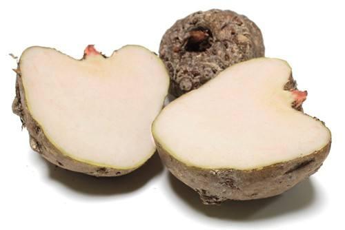 山东保健食品oem贴牌代加工厂-德州健之源