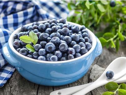 蓝莓压片糖果oem代加工德州健之源