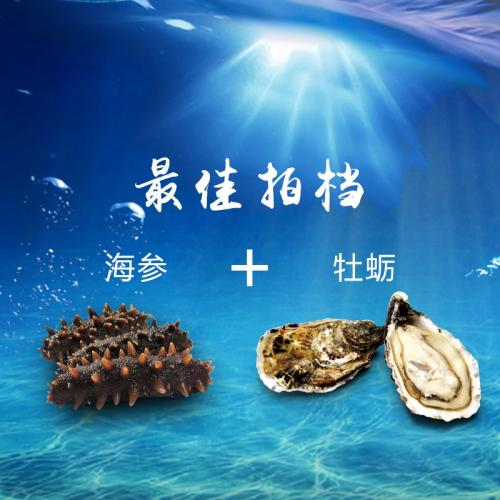 海参牡蛎图