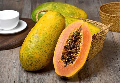 木瓜酵素代加工德州健之源