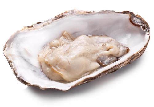 保健品OEM代加工_牡蛎的功效与作用_德州健之源