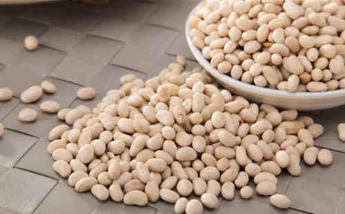 白芸豆压片糖果代加工厂家-减肥片剂OEM-德州健之源